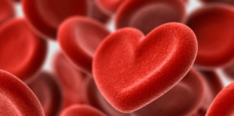 Attentats :  pourquoi il faut encore donner son sang