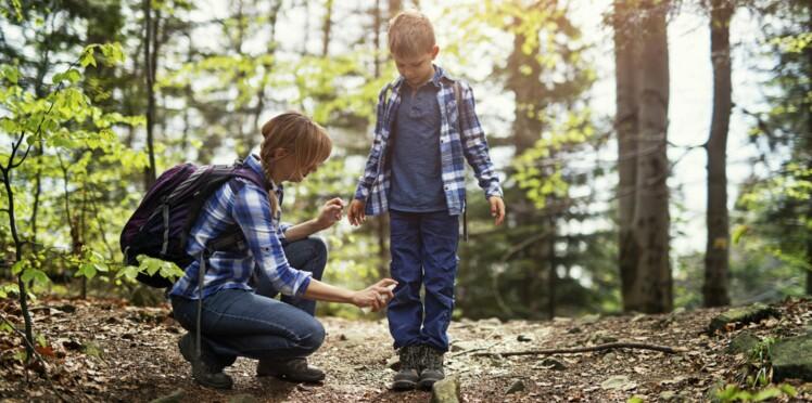 Maladie de Lyme : 10 erreurs à ne pas commettre pour bien s'en protéger