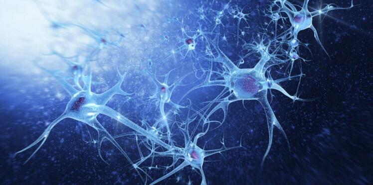 Qu'est-ce que la neuropathie ?