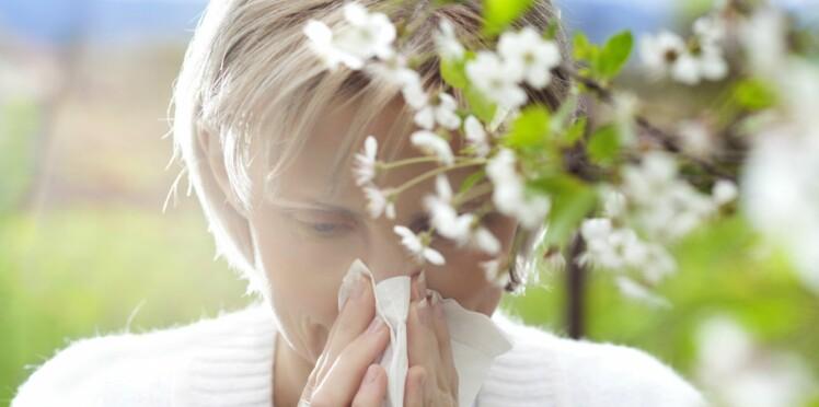 Suspension de l'activité de Stallergenes : des milliers de patients allergiques privés de traitement