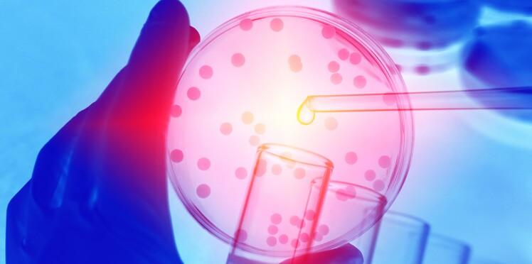J'ai testé un voyage au pays des microbes