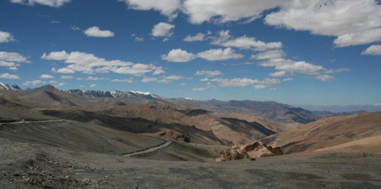 Le yarsagumba, le viagra de l'Himalaya