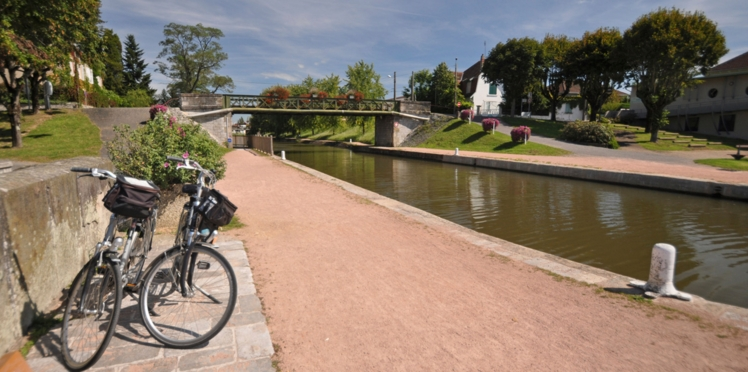 Balade en vélo le long de la Loire sauvage