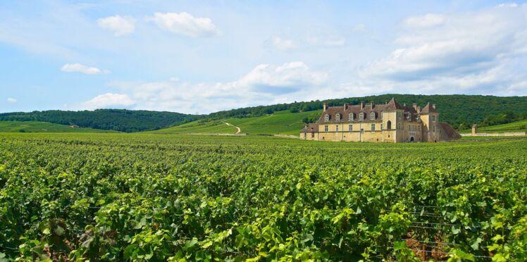 Bourgogne, sur la route des vins