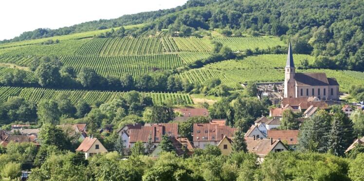 De vignes en villages, une balade alsacienne