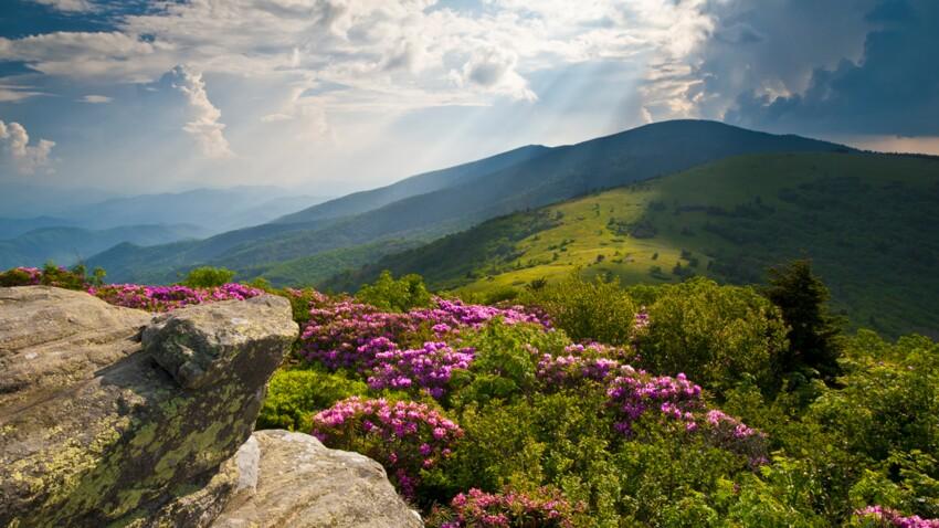 Découvrez la montagne l'été
