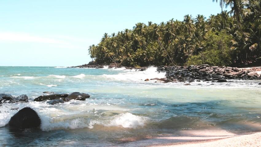 La Guyane grandeur nature