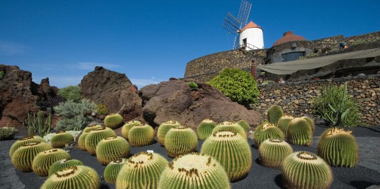 Lanzarote et les autres visages des Canaries