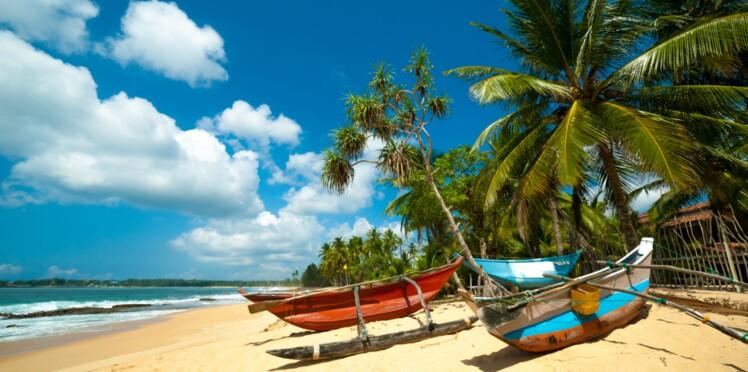 Sri Lanka, oasis verdoyante au cœur de l'océan
