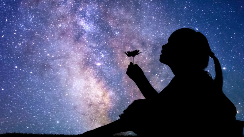 Nuits des étoiles 2019 : comment bien observer les étoiles filantes ?
