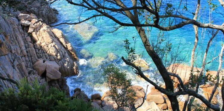 Le site qui vous rendra amoureux de la Corse