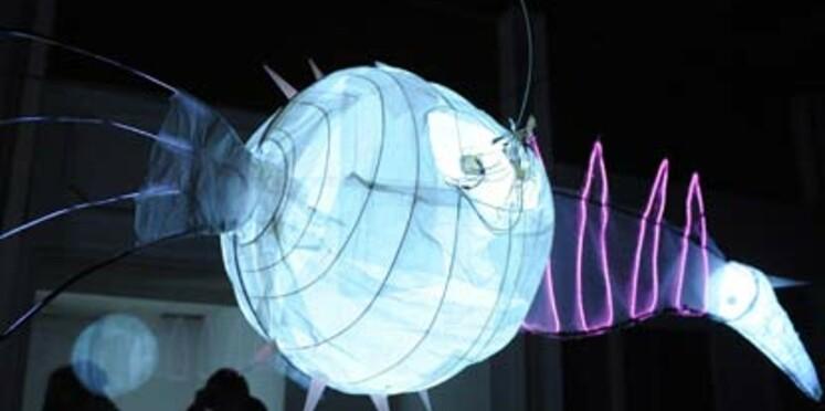 Fête des Lumières de Lyon ce week-end