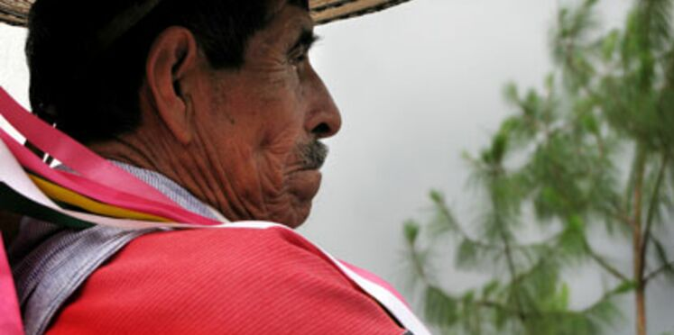 Grippe porcine : les voyagistes maintiennent les départs au Mexique