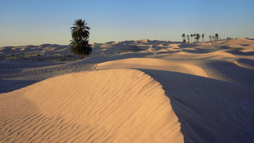 Tunisie : les voyagistes prolongent la suspension des départs