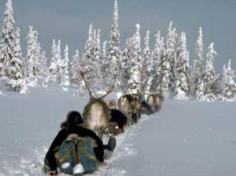 Frissons nordiques en Laponie