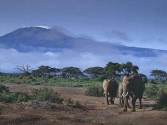Le Kenya pour les petits