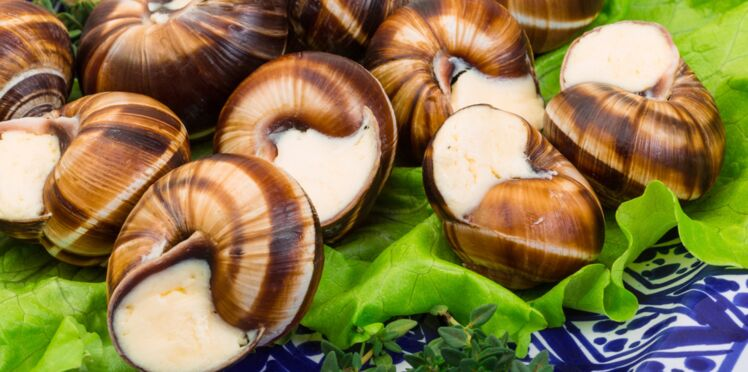 Des escargots à toute vitesse