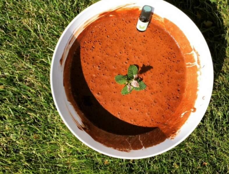 Mousse au chocolat à l'huile essentielle de menthe des champs