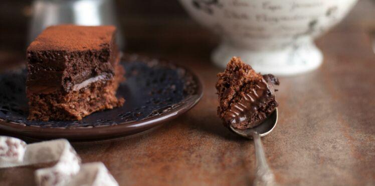 Gros gâteau mousseux au chocolat et éclats de fève