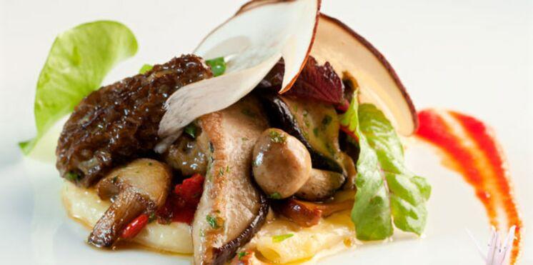 Cèpes et champignons du moment en macaronade gratinée
