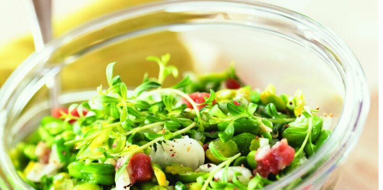 Salade de maquereau et de fenouil