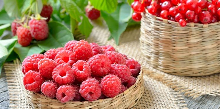 Coulis de fruits rouges