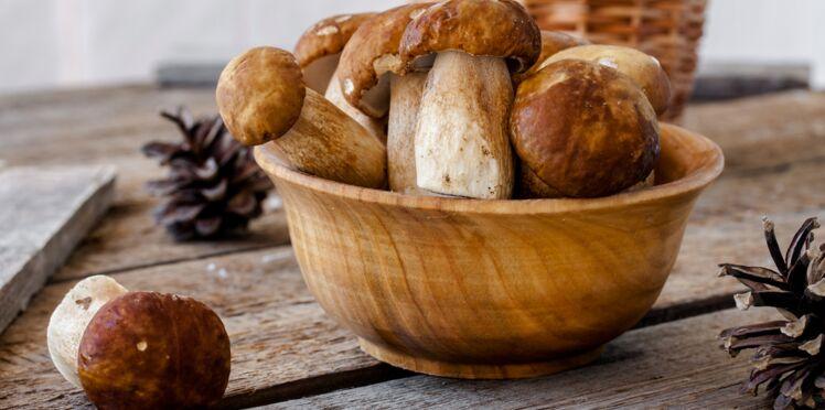 Cèpes : nos recettes et conseils pour bien les préparer