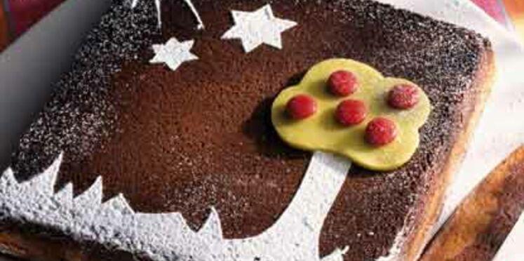 Gâteau paysage aux 2 chocolats