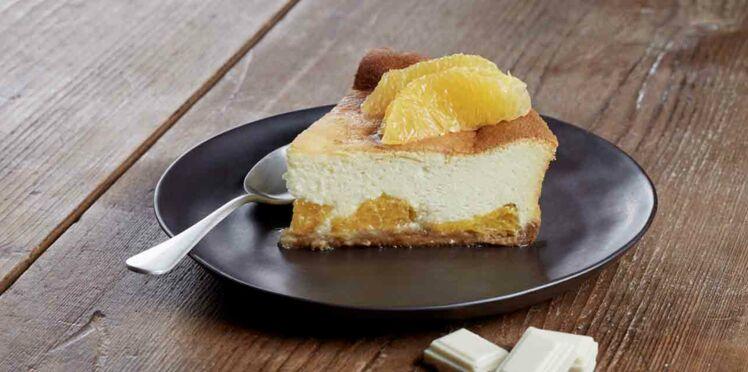 Cheesecake au chocolat amandes speculoos orange