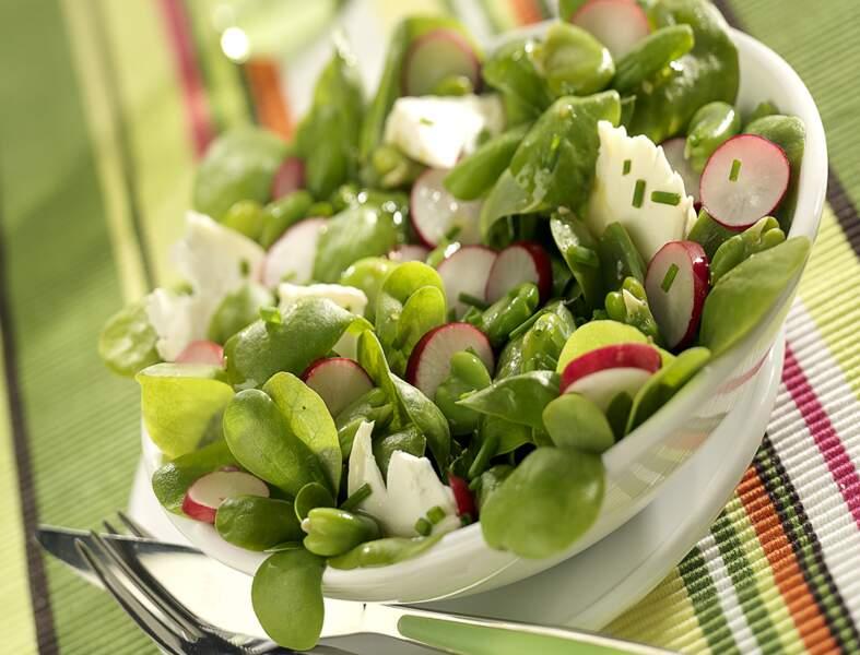 Salade végétarienne printanière