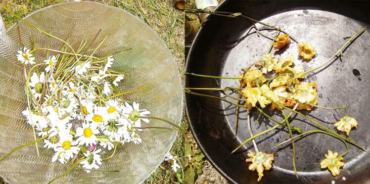Beignets salés aux fleurs