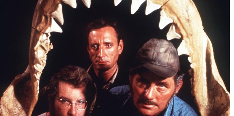 Un meurtre non élucidé depuis 44 ans enfin résolu grâce aux Dents de la mer ?