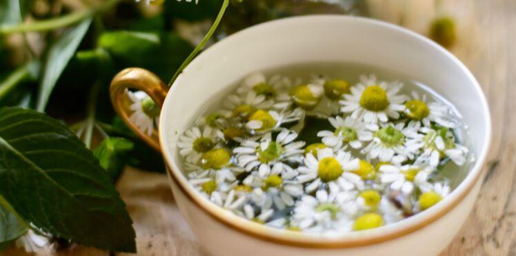 Astrologie : quelles plantes médicinales recommandées pour votre signe