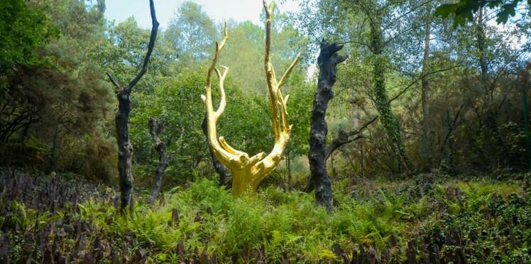 L'itinéraire idéal pour découvrir la forêt de Brocéliande