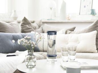 carafe d 39 eau filtrante pourquoi traiter l 39 eau du robinet. Black Bedroom Furniture Sets. Home Design Ideas
