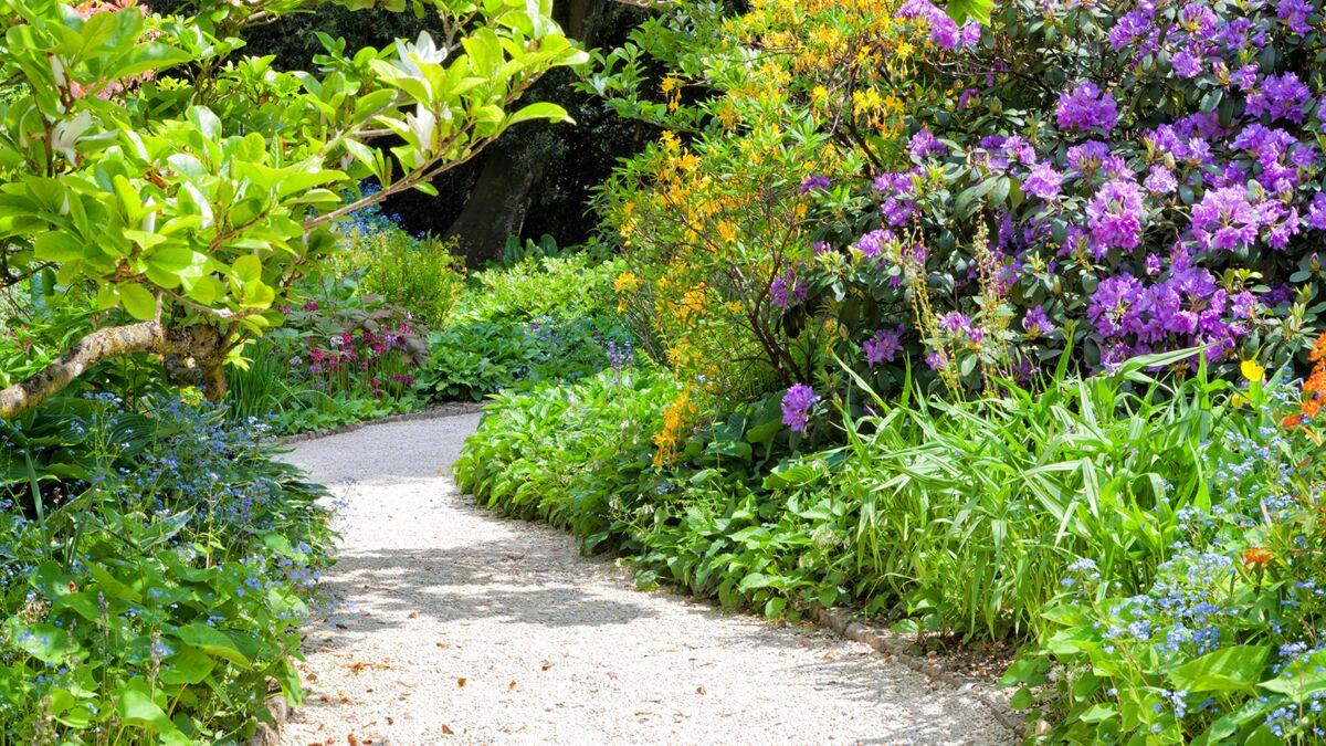 Les Jardins À L Anglaise comment faire un jardin à l'anglaise ? : femme actuelle le mag