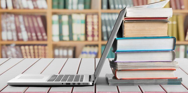 Contrat de professionnalisation ou contrat d'apprentissage : quelles différences ?
