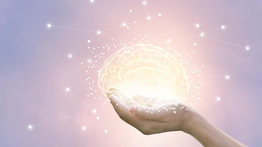 Quel est le signe astrologique le plus intelligent ?