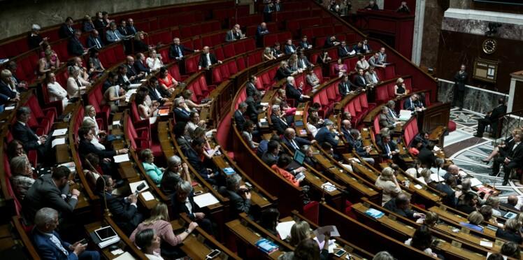 Interdiction du glyphosate: quels députés ont voté pour (et contre) ?
