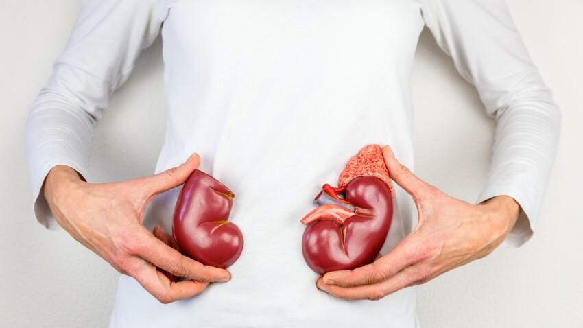 Lithiases urinaires : quelle alimentation privilégier quand on souffre de calculs rénaux ?