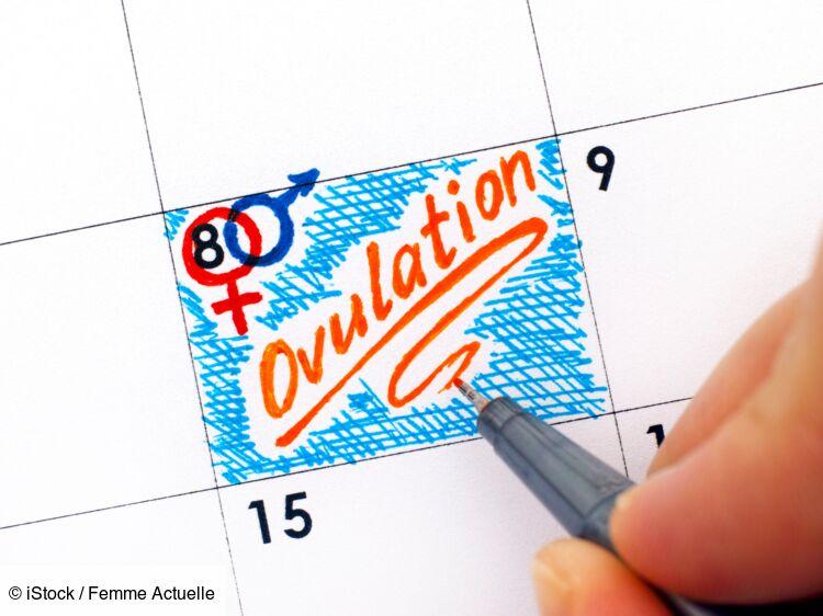 Ovulation : 4 signes qui prouvent que vous êtes dans la ...