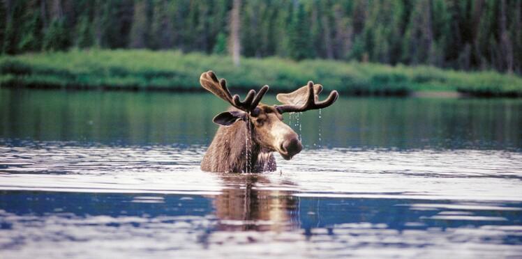 7 sites naturels exceptionnels à voir au nord de Montréal