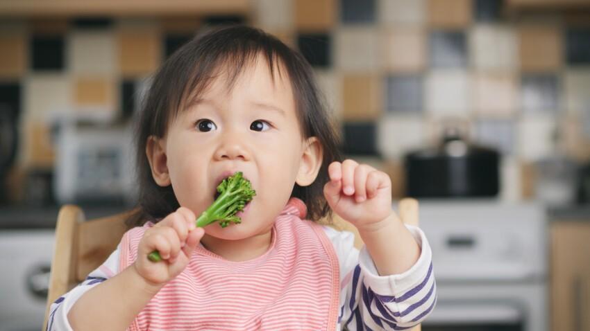 DME : quelles précautions prendre lorsque l'on débute une diversification alimentaire menée par l'enfant ?