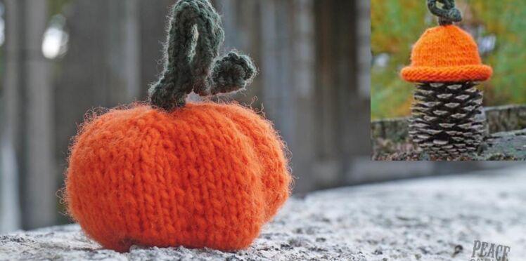 Une citrouille et un bonnet assorti à tricoter pour Halloween