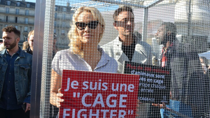Pamela Anderson enfermée dans une cage à Paris