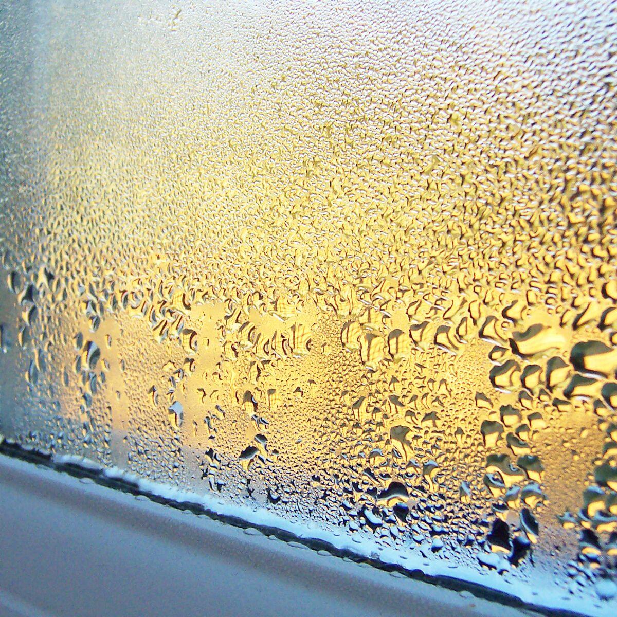 Humidité Dans Une Maison humidité : quels risques pour ma maison et comment la