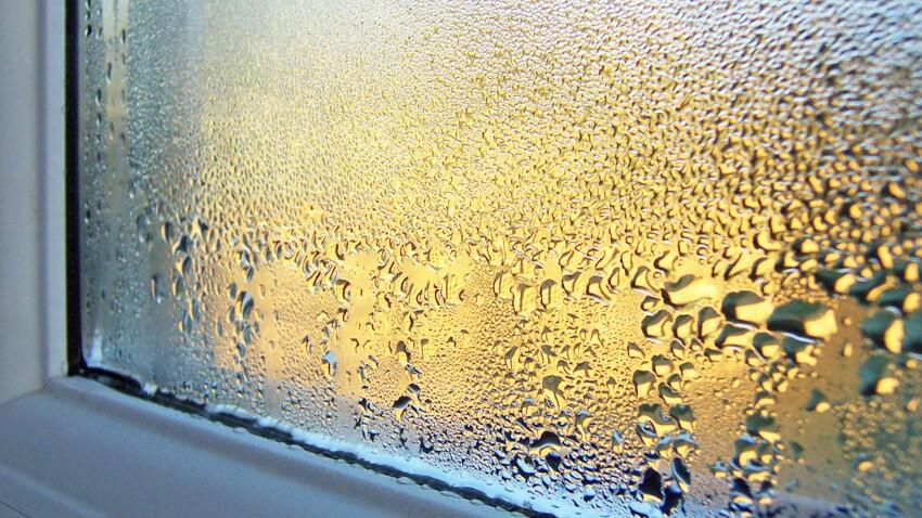 Humidité : quels risques pour ma maison et comment la traiter ?