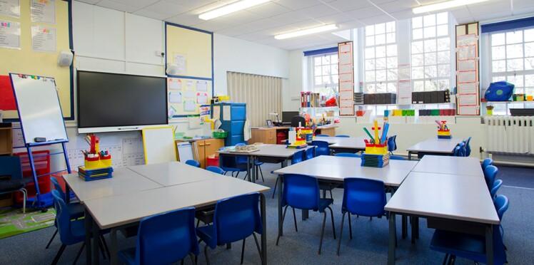 Invasion d'araignées-loup à Montpellier : sept classes fermées dans une école