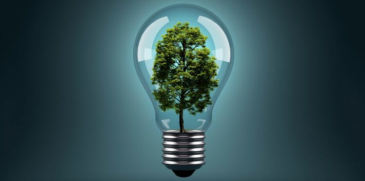 Énergie : comment économiser 1000€ par an