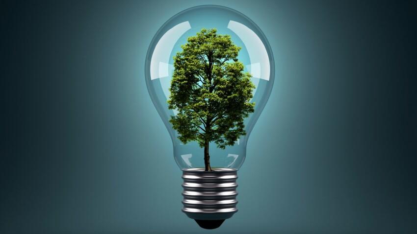 Énergie : comment économiser 1000 € par an
